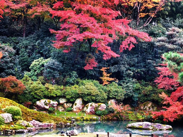 アルファリゾートで京都の仲居さんの仕事